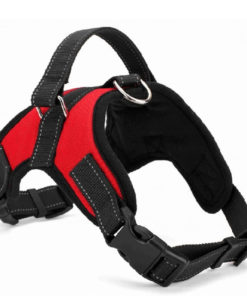 2017 Nylon Heavy Duty Dog Pet Harness Collar K9 Padded Extra Big Large Medium Small Dog 10.jpg 640x640 10