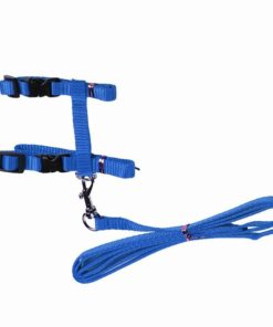 Cat Harness And Leash Hot Sale 4 Colors Nylon Products For Animals Adjustable Pet Traction Harness 5.jpg 640x640 5