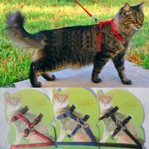 Cat Harness And Leash Hot Sale 4 Colors Nylon Products For Animals Adjustable Pet Traction Harness