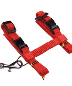 Cat Harness And Leash Hot Sale 4 Colors Nylon Products For Animals Adjustable Pet Traction Harness 6.jpg 640x640 6