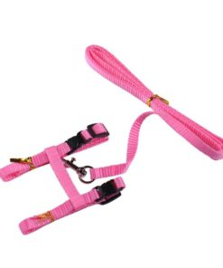 Cat Harness And Leash Hot Sale 4 Colors Nylon Products For Animals Adjustable Pet Traction Harness 7.jpg 640x640 7