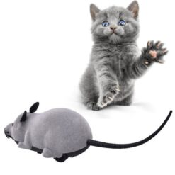 Cat Toy Wireless Remote Control Mouse Electronic RC Mice Toy Pets Cat Toy Mouse For kids 1