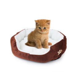 Cute Soft Dog Cat Pet Bed Mini House for Candy Colored Dogs Beds Soft Warm Pet 4