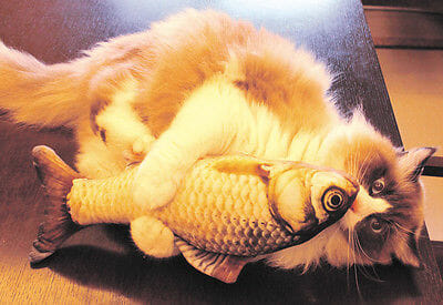 Funny Lifelike Fish Shape Pet Cat Kitten Teaser Cute Simulation Fish Playing Toy Catnip Toy Pillow 1
