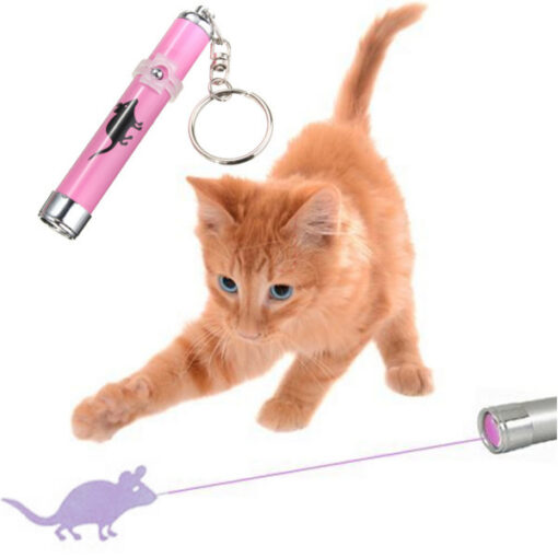 Portable Creative and Funny Pet Cat Toys LED Laser Pointer light Pen With Bright Animation Mouse 1